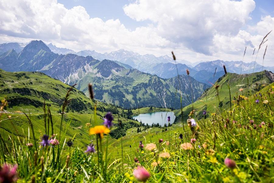 Que faire à la montagne l'été : les bons plans